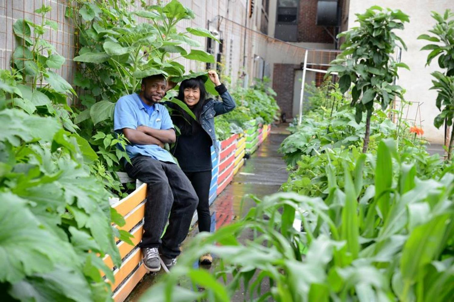 Grow Food, Meei Ling Ng, Sunday Breakfast Rescue Mission